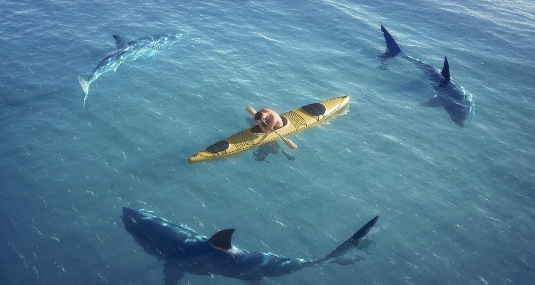 продаю чем можно отпугнуть акулу от лодки одуванчиков