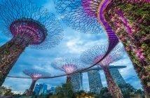 Телекоммуникационные операторы Сингапура будут отвечать за кибербезопасность сетей по закону