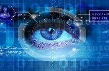 70 млн рублей инвестирует российский госфонд ФРИИ в проект верификации частных данных