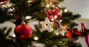В Беларуси установили новогоднюю елку, которая предсказывает будущее, поет и ругается
