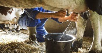 В Беларуси разрабатывается глобальный план интернетизации колхозов