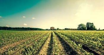 «Ростелеком» может стать сервис-провайдером для сельского хозяйства