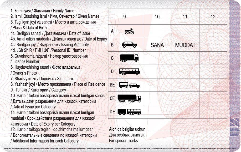 Образец национального водительского удостоверения/обратная сторона. Источник: UZ24