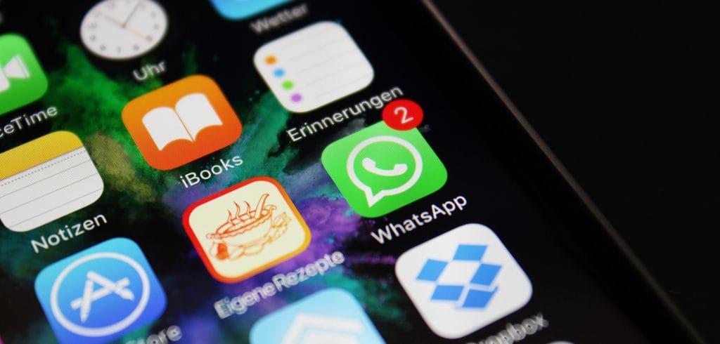 Минобразования и науки Кыргызстана будет принимать обращения граждан в WhatsApp