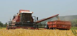Минсельхоз Казахстана автоматизирует 3 направления: поставку удобрений, гербицидов и лизинг